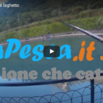 Il video di pesca alle trote al laghetto