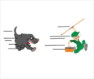 Inseguito dal cane durante la pesca a spinning