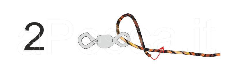 Piegare un capo del verso la parte di filo che proviene dall'amo ed incrociare, in modo da creare un'asola agganciata alla girella