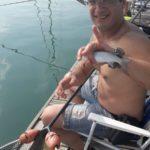 Muggine o cefalo appena catturato in una battuta di pesca a muggini